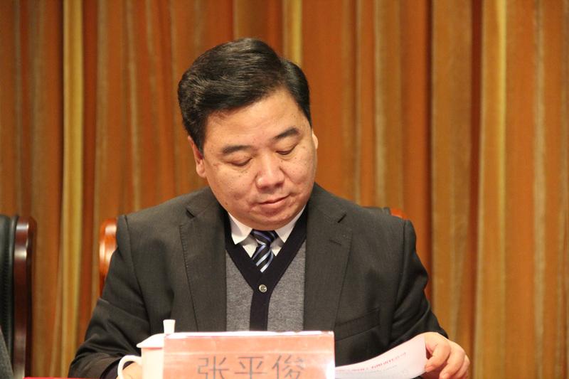 7.集团公司党委委员、副总经理张平俊出席会议_副本.jpg