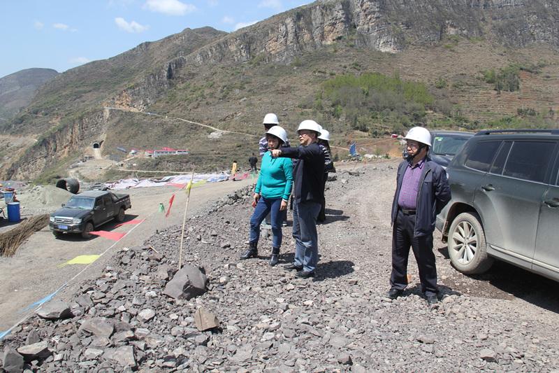 集团公司监事会主席钟应兰到夹岩水利枢纽工程施工现场调研